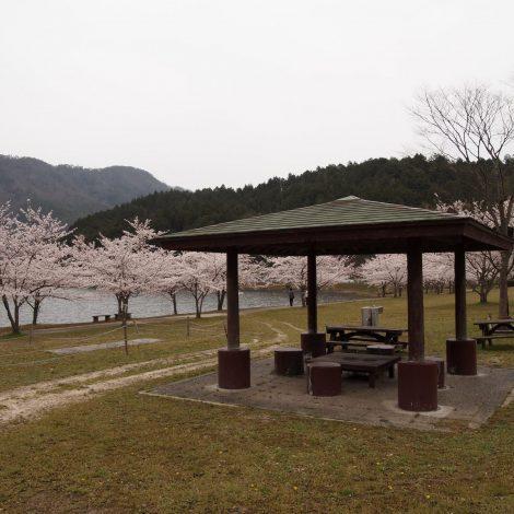 文覚ふれあい公園