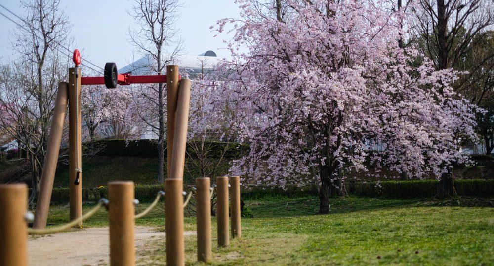 公園 亀岡 運動