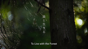 >To Live with the Forest