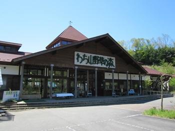 【京丹波町】わち山野草の森
