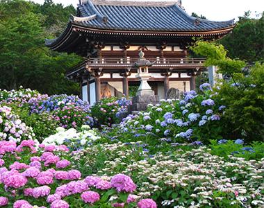 第1番札所「丹州華觀音寺」
